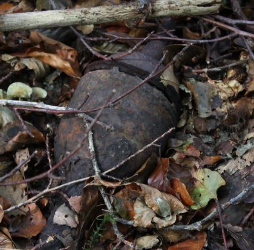 rusty metal grenade half hidden by sticks and leaves
