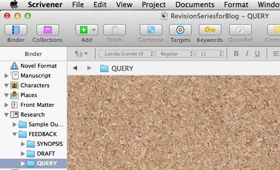 Screenshot of FEEDBACK folder with subfolders SYNOPSIS, DRAFT, QUERY.