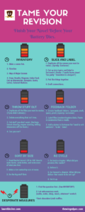 infographic for simple revision plan