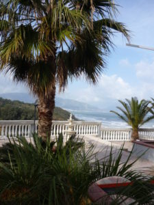 palm trees with a white plaster railing and the mountains and ocean of Sicily behind