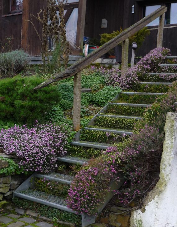 outdoor steel staircase with blooming heather filling in the risers